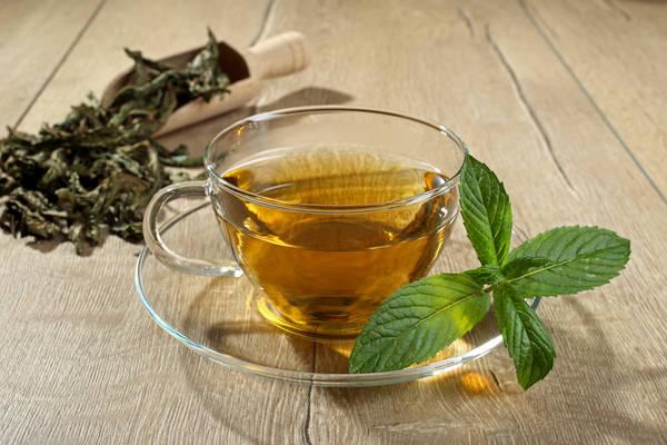 thé vert bio tunisie